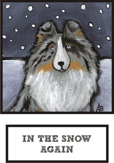 in-the-snow-again-blue-merle-sheltie-thumb.jpg
