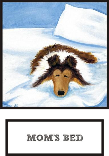 mom-s-bed-sable-sheltie-thumb.jpg