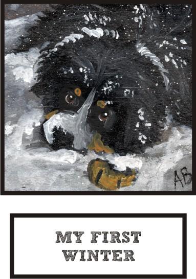 my-first-winter-bernese-mountain-dog-thumb.jpg