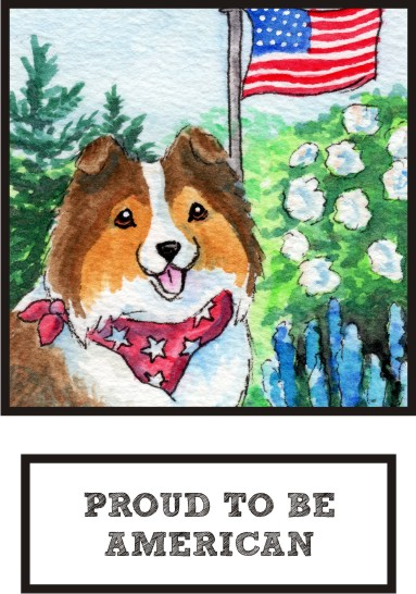 proud-to-be-american-sable-sheltie-thumb.jpg