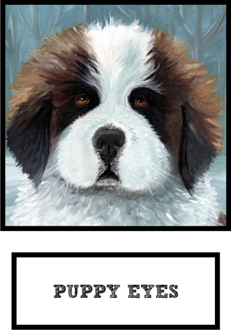 puppy-eyes-saint-bernard-thumb.jpg