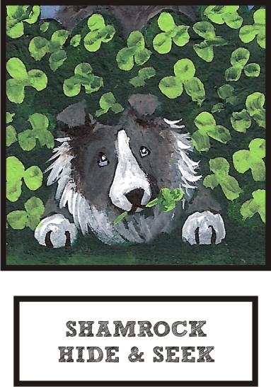 shamrock-hide-and-seek-bi-blue-sheltie-thumb.jpg