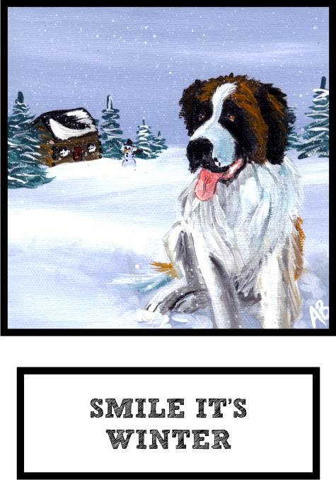 smile-its-winter-saint-bernard-thumb.jpg