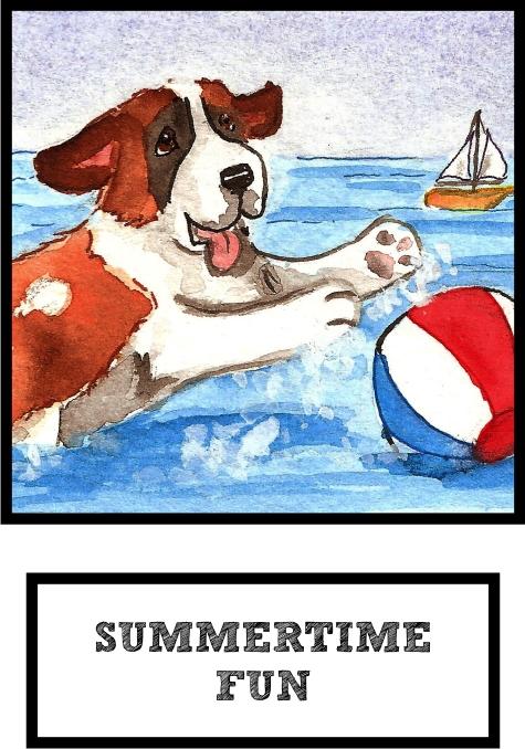 summertime-fun-saint-bernard-thumb.jpg
