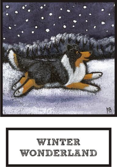winter-wonderland-tri-color-sheltie-thumb.jpg