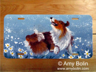 LICENSE PLATE · HAPPY DANCE · SABLE SHELTIE · AMY BOLIN