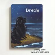 MAGNET · DREAM · BLACK NEWFOUNDLAND · AMY BOLIN
