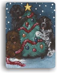 MAGNET · CHRISTMAS TOGETHER · BLACK, BROWN, LANDSEER · AMY BOLIN