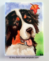 MAGNET · AUTUMN BERNER · BERNESE MOUNTAIN DOG · AMY BOLIN