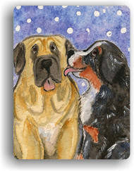 MAGNET · LITTLE KISS  · BERNESE MOUNTAIN DOG, MASTIFF · AMY BOLIN