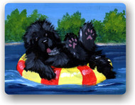 MAGNET · DOG DAYS  · BLACK  NEWFOUNDLAND · AMY BOLIN