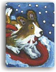 MAGNET · A SNOWY RIDE · SABLE SHELTIE · AMY BOLIN