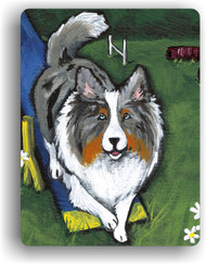 MAGNET · AGILITY KING · BLUE MERLE SHELTIE · AMY BOLIN