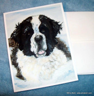 NOTE CARDS · CHARLIE'S SNOW DAY · SAINT BERNARD · AMY BOLIN