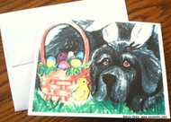 NOTE CARDS · EASTER NEWF · BLACK NEWFOUNDLAND · AMY BOLIN