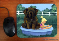 MOUSE PAD · BATHING BEAUTIES · BROWN NEWFOUNDLAND · AMY BOLIN
