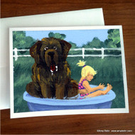 NOTE CARDS · BATHING BEAUTIES · BROWN NEWFOUNDLAND · AMY BOLIN