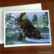 NOTE CARDS · DIGGIN' IT · BROWN NEWFOUNDLAND · AMY BOLIN