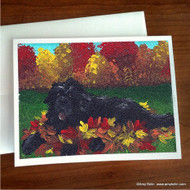 NOTE CARDS · HAPPINESS IS A PILE OF LEAVES · BLACK NEWFOUNDLAND · AMY BOLIN