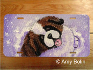 LICENSE PLATE · A TASTE OF WINTER ·  SAINT BERNARD · AMY BOLIN