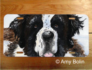 LICENSE PLATE · CHARLIE'S SNOW DAY ·  SAINT BERNARD · AMY BOLIN