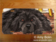 LICENSE PLATE · SO HARD TO BE GOOD · BLACK NEWFOUNDLAND · AMY BOLIN