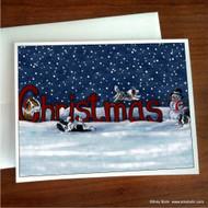 NOTE CARDS · A CHRISTMAS CELEBRATION · BI BLACK, BI BLUE, BLUE MERLE, SABLE, TRI COLOR SHELTIE · AMY BOLIN