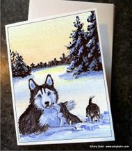 NOTE CARDS · WINTER MORNING (BLUE EYES) · HUSKIES & MALAMUTES · AMY BOLIN