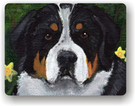 MAGNET · PIPER · GREATER SWISS MOUNTAIN DOG · AMY BOLIN