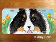 LICENSE PLATE · EASTER SHELTIE · TRI COLOR SHELTIE · AMY BOLIN