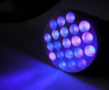 21-led-purple-light-flashlight-id-1259-nite-350.jpg