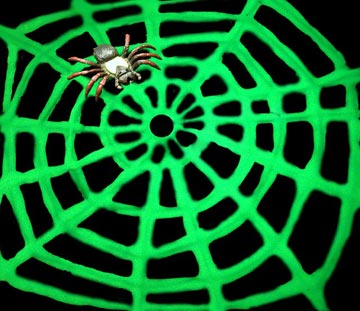glow-in-the-dark-web.jpg