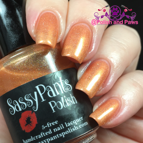 """Audacious"" Sassy Pants Polish Debut ""Find Your Sassy!"" Collection (FALL15)"