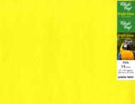 Charles Craft - 14 Ct Lemon Twist 15 x 18 in