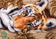 Gold Collection Petites - Beguiling Tiger