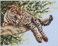 Janlynn - Leopard Cameo