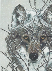 Candamar - Winter Wolf