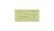 DMC # 15 Apple Green Floss / Thread