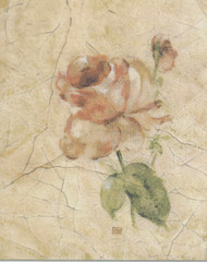 Candamar - Rose on Cracked Linen
