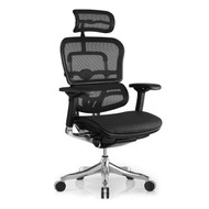 Eurotech by Raynor Ergo Elite High Back Chair - ME22ERGLT