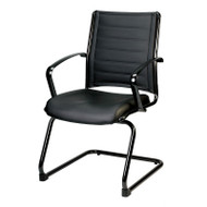 Eurotech by Raynor Europa Leather Guest Chair - LE833TNM
