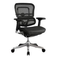 Eurotech by Raynor Ergo Elite Mesh Mid-Back Chair - ME5ERGLTLOW-N15