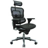 Eurotech by Raynor Ergohuman Mesh High-Back Chair - CAME7ERG