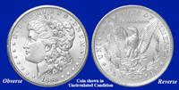 1883-CC Morgan Silver Dollar - Collector's Circulated Condition