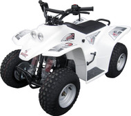 Quadzilla Buzz 50