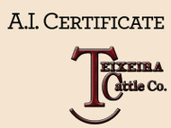 TEX Demand 2791 Certificte