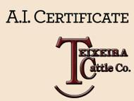 G A R Phenom 7953 Certificate