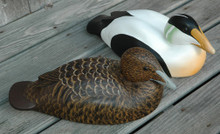 Common Eider pair made from this pattern.