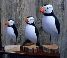 Seal Island Puffin Decoys