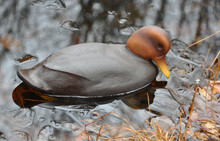 Primitive Black Duck Decoy
